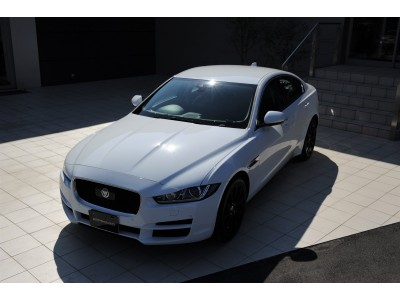 XE 2.0 I4 DIESEL (180PS) PURE サルーン